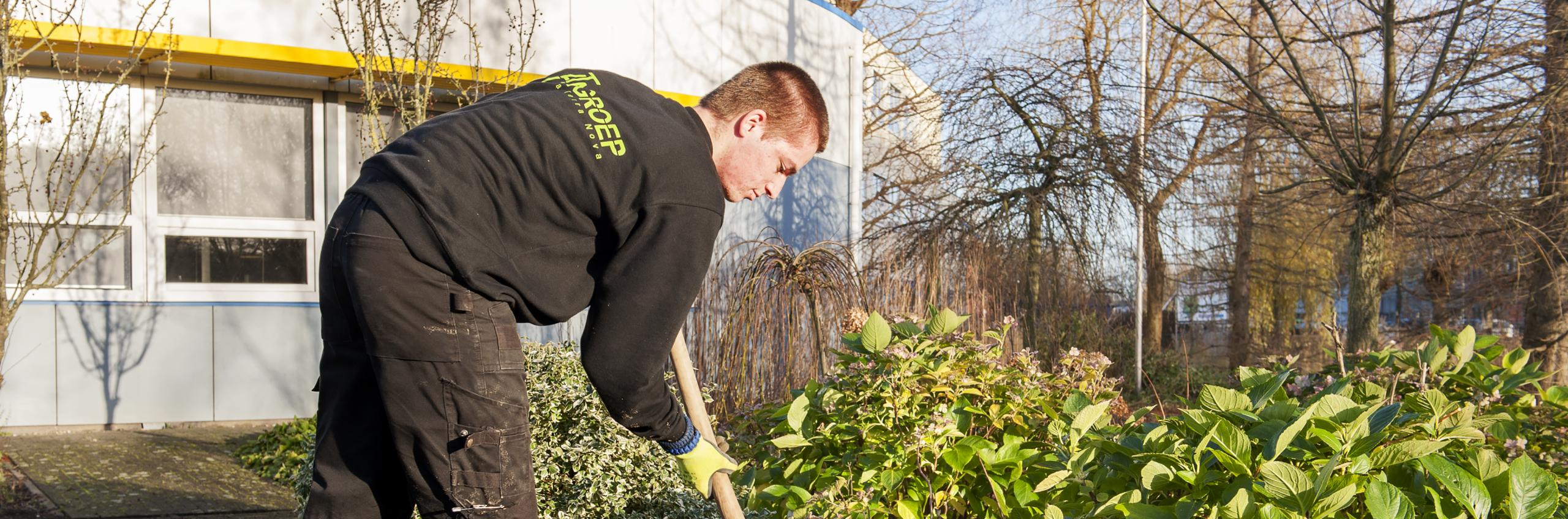Medewerker hovenier scalda for Opleiding tuin